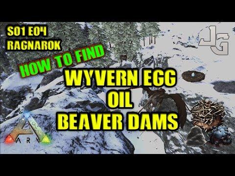 ARK Ragnarok - Finding Wyvern Egg, Oil and Beaver Dams/cementing paste - S01E04