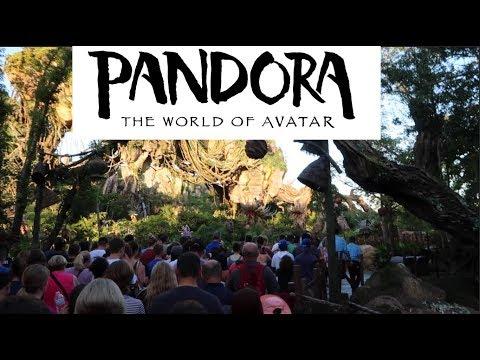 Pandora Flights Of Passage NO WAIT No Fast Pass and Navi River Journey at Disney's Animal Kingdom