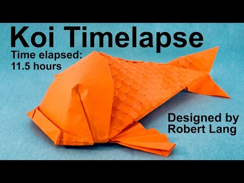 Origami Koi Fish With 400 Scales Timelapse (Robert Lang)
