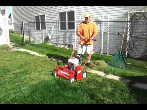 How to do a Spring Clean-up on your Lawn
