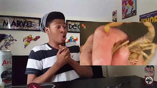 Download Which Scorpion STING is Worse?!....(REACTION!!!) Video