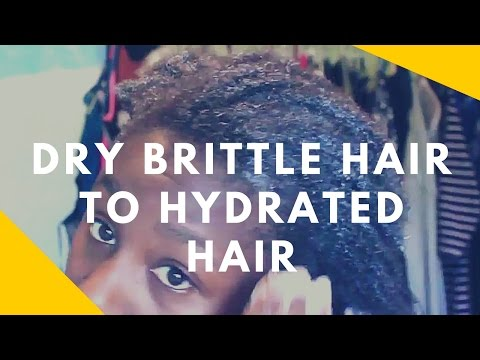 How to CHANGE Dry brittle Natural Hair to HYDRATED hair
