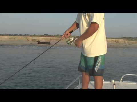 Luke Flounder Jigging Florida
