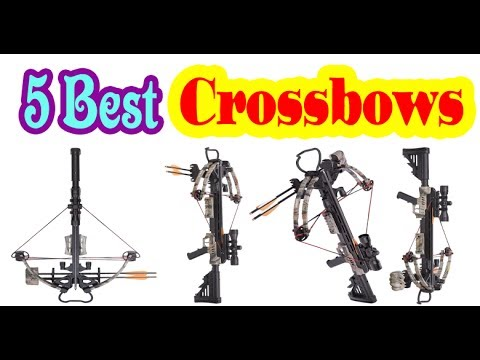 Best Crossbows to Buy on 2017