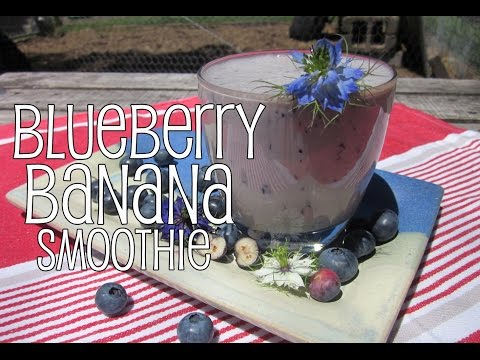 Blueberry and Banana Smoothie with The Backyard Blendologist