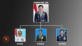 Panglima TNI Marsekal Hadi Tjahjanto Pensiun? ini Jenderal penggantinya.....