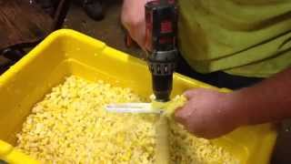 Fastest Way To Cut Corn Off Cobb For Freezing Or Canning