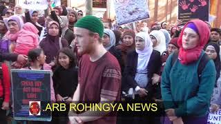 ARB ROHINGYA  NEWS 17/09/2017