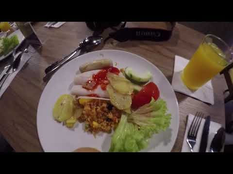 EnVi  40&41 2018 Singapore & Malaysia