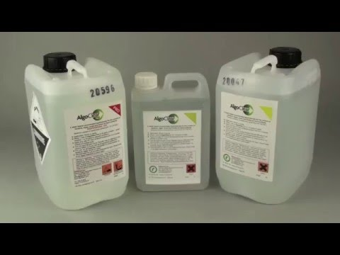 Moss, algae & lichen control on hard surfaces with AlgoClear