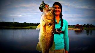 Crushing Big Bass on the New Terminator Popping Frog!! Topwater Frog Fishing