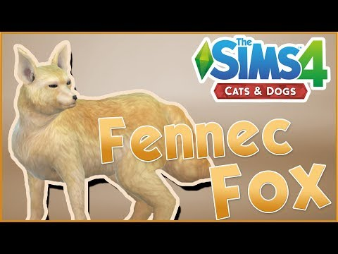 A Wild Fennec Fox Arrives!! 🐱🐶 Sims 4: Cats & Dogs
