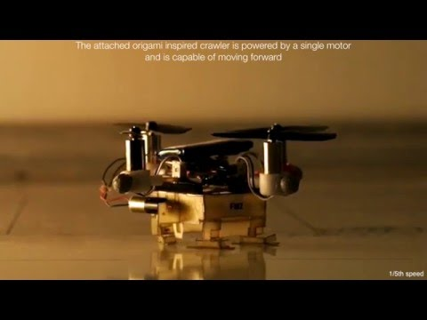 The Picobug : a mesoscale robot that can run, fly, and grasp