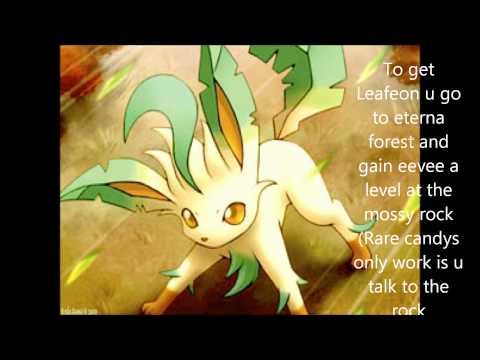 how to get each eeveelution pokemon diamond