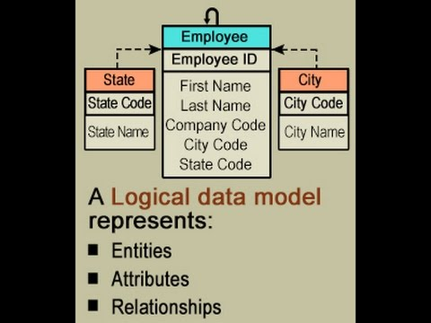 Logical Data Model Explained with Examples