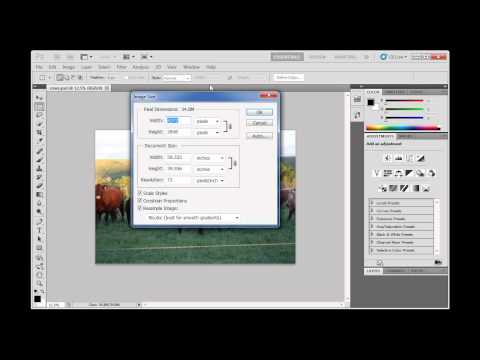 Resize a Photograph for Print and Save it as a TIFF - Photoshop CS5