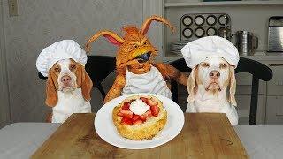 Dogs Bake Shortcake w/Creature: Chef Dogs Maymo & Potpie