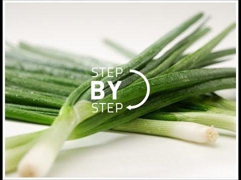 Green Onions, Scallions, What is Green Onion? What are Scallions? How to Cut Green Onions