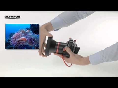 PTWC-01 Underwater Wide-Angle Converter .mp4