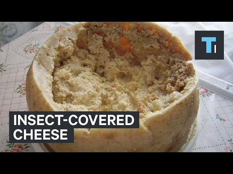 A cheese scientist tells us the cheese he would never eat