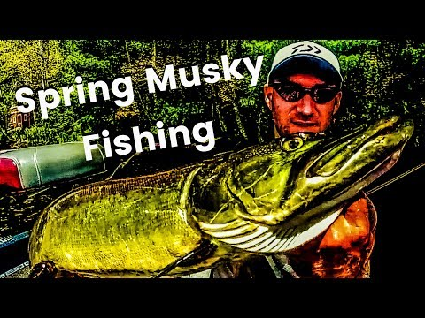 Spring Musky Fishing in Northern Wisconsin: Tips and Techniques