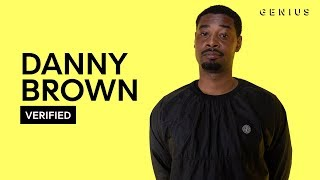"Danny Brown ""Dirty Laundry"" Official Lyrics & Meaning 