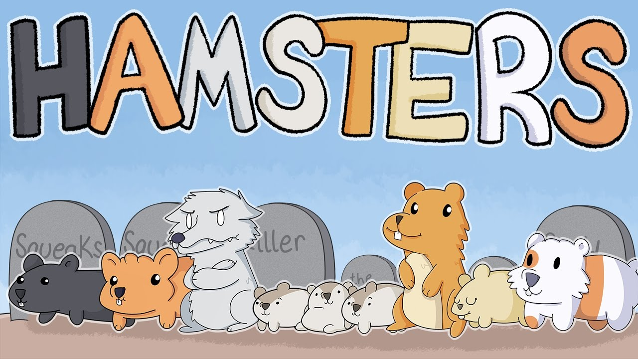 Our Hamsters
