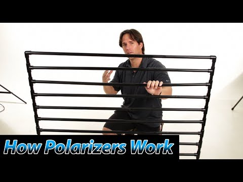 How Polarizers Work | Polarizing Filters Tutorial