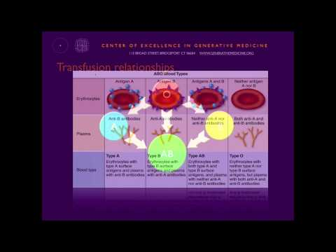 Personalized Nutrition  What Your Blood Type Means for Your Health with Dr  Peter D'Adamo, ND 7 28 1