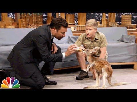 watch Robert Irwin and Jimmy Feed a Baby Kangaroo