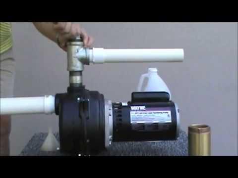 Wayne Cast Iron Lawn Sprinkler Pump - 4790 GPH, 1 1/2 HP, 2in., Model# WLS150