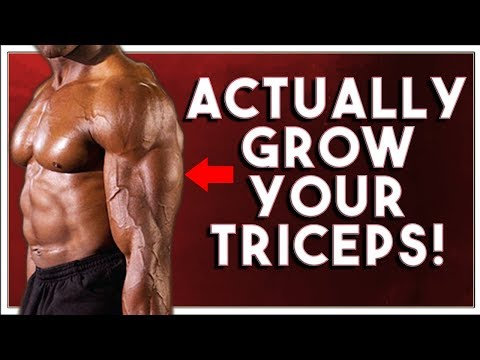 Tricep Kickbacks DONE RIGHT! - Bend Over Cable Tricep Extensions
