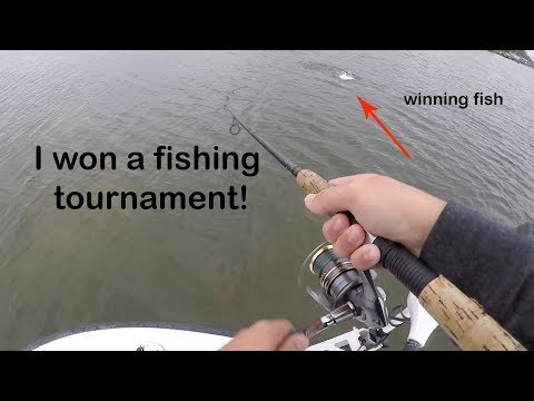 I Won a Fishing Tournament! - Tampa Bay Snook, Trout, and Redfish