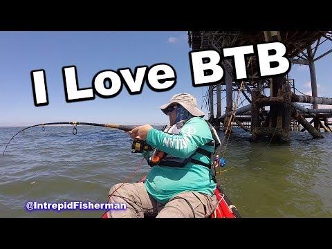 Shark Fishing - BTB Bolivar beach fishing - Hard head and Gaftop catfish