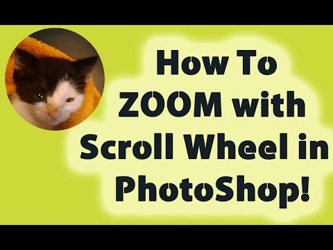 How To ZOOM with Your Scroll Wheel in Photoshop!