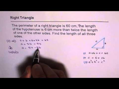 Perimeter of Right Triangle Quadratic Function Application Test
