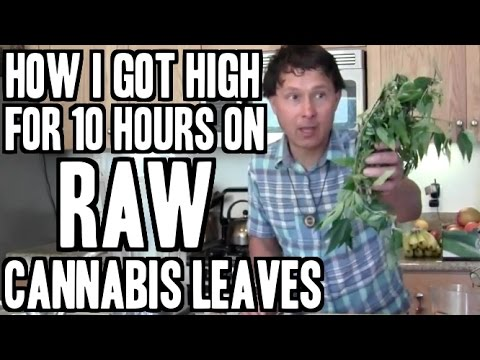 How I Got High for 10 Hours on Raw Cannabis Leaves