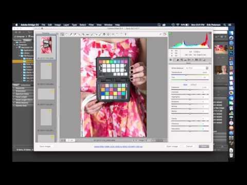 CameraRAW White Balance on Multiple Images