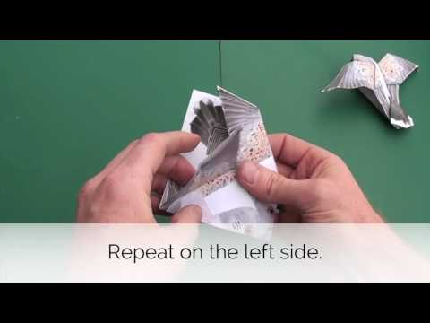 How to fold our Origami Turtle Dove