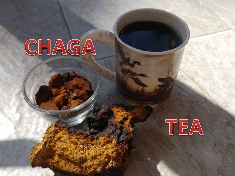 How to make chaga mushroom tea – great for your keto diet!