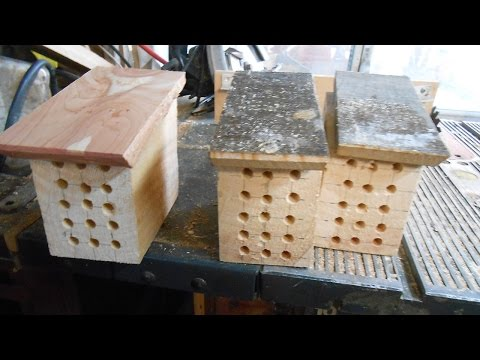 Building Managable Mason Bee Housing