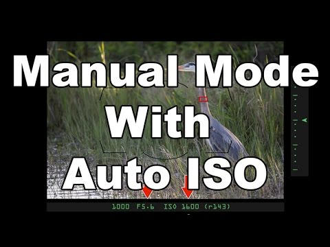 Manual Mode With Auto ISO