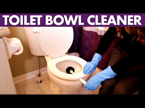 Toilet Bowl Cleaner - Day 17 - 31 Days of DIY Cleaners (Clean My Space)