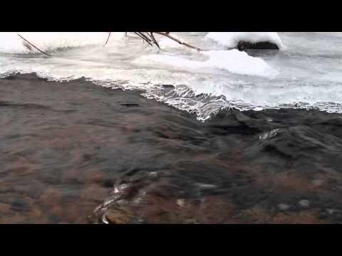 Pine Run Creek- Bucks County PA
