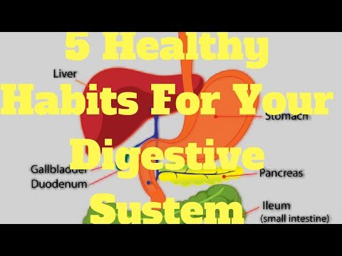 5 Healthy Habits For Your Digestive System