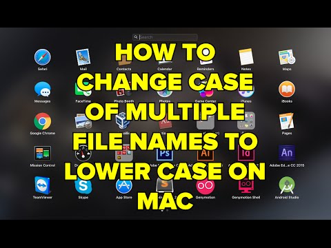 How to change case of multiple file names to lower case on MAC