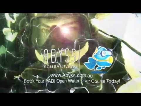 Book Your Abyss PADI Open Water Dive Course Today