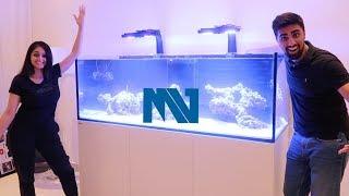 MY NEW CUSTOM $40,000 FISH TANK !!!