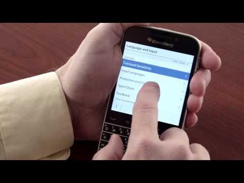 Blackberry Classic Training