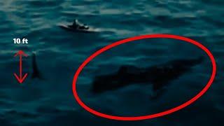 7 Megalodones Captados en Video y Vistos en la Vida Real  2018